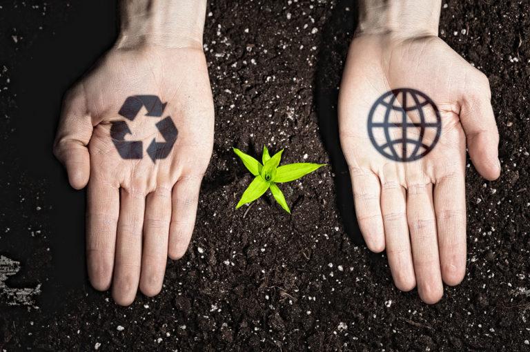 eco conscious hands