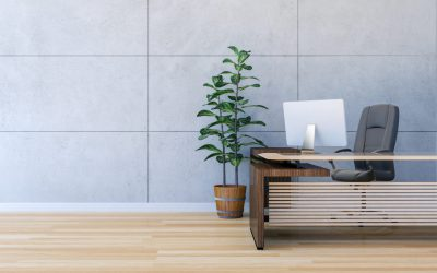 How to make your office more eco-friendly